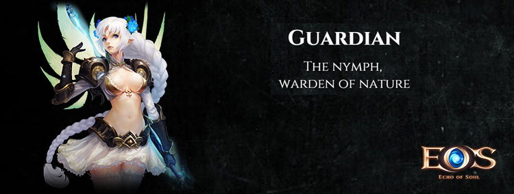 echo of soul guardian class
