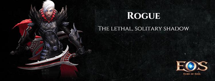 echo of soul rogue class