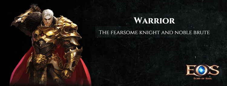 echo of soul warrior class